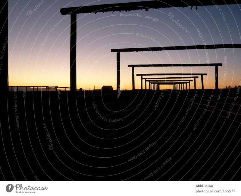 Abendtraum Himmel Natur schön Sommer ruhig Erholung Leben Freiheit Gefühle Landschaft Glück träumen Wärme Stimmung Zufriedenheit warten