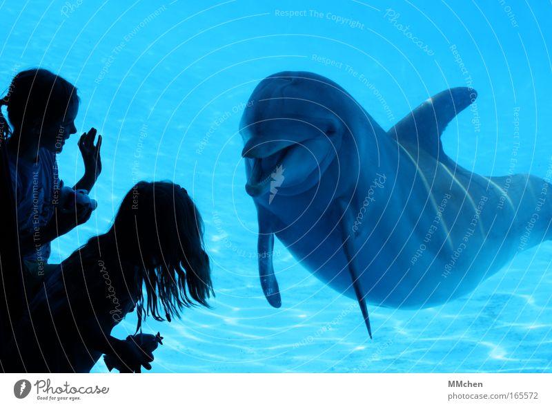 Wer bist denn Du? Kind Natur Wasser Mädchen blau Freude Tier Spielen Glück lachen Fröhlichkeit Kommunizieren Schwimmbad Wal beobachten