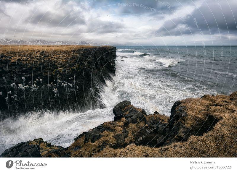 Budir Beach schön Leben Ferien & Urlaub & Reisen Abenteuer Strand Meer Insel Wellen Umwelt Natur Landschaft Tier Urelemente Erde Wasser Himmel Wolken Klima