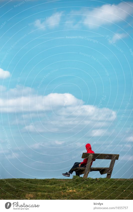 Entschleunigung Erholung ruhig maskulin feminin androgyn 1 Mensch 18-30 Jahre Jugendliche Erwachsene 30-45 Jahre Himmel Wolken Schönes Wetter Wiese