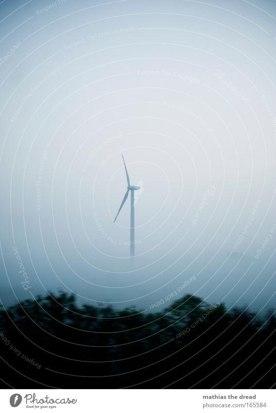 WINDIGE ANGELEGENHEIT II Natur schön Himmel Baum Pflanze ruhig Wolken Wald Herbst grau Regen Landschaft Luft Feld Architektur Nebel