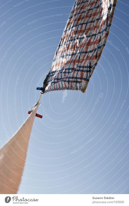 SONNtag Himmel Sommer Wiese Garten Wind Wohnung Innenarchitektur Wachstum Bekleidung Häusliches Leben Dekoration & Verzierung Küche Reinigen Schönes Wetter