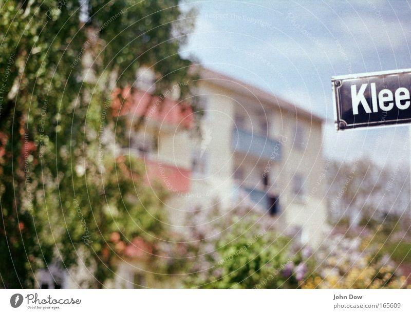 Wo der Klee wohnt. Baum grün blau Pflanze Haus Garten Glück Wohnung Schriftzeichen Buchstaben Häusliches Leben Zeichen Balkon Hinweisschild Wegweiser Klee