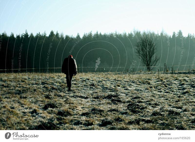 Winterspaziergang Mensch Natur ruhig Einsamkeit Ferne Wald Leben kalt Wiese Gefühle Bewegung Freiheit träumen Traurigkeit Wege & Pfade