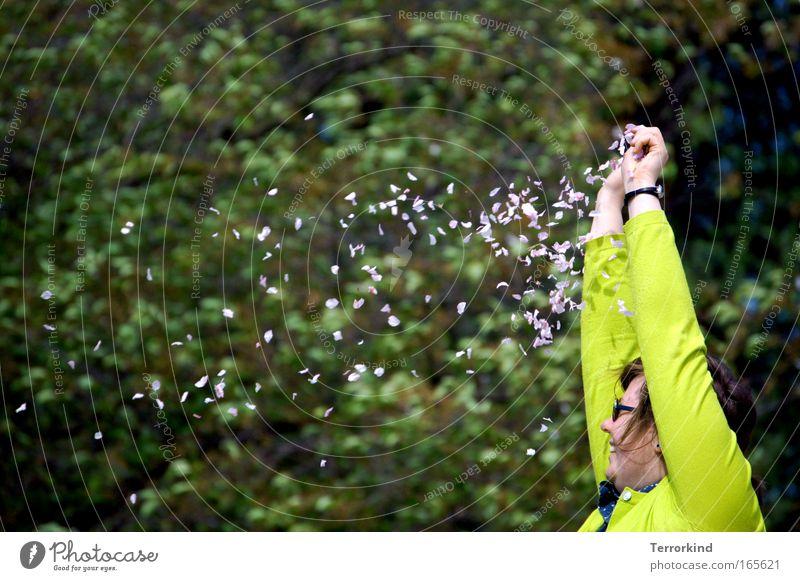 [HH 04.09] what.comes.is.better.than.what.came.before. Frau Baum Blume Blüte liegen Pullover Kirschblüten