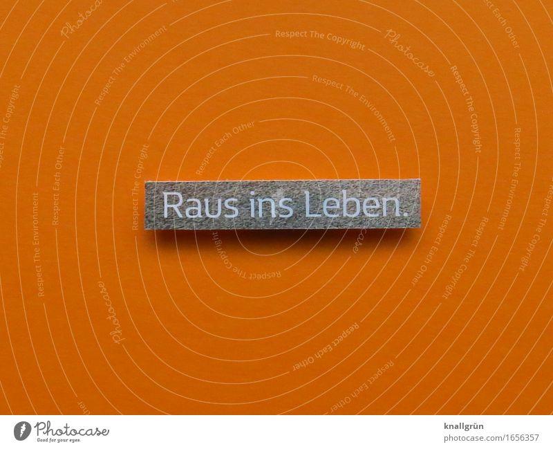 Raus ins Leben. weiß Freude Gefühle grau Stimmung orange Schilder & Markierungen Schriftzeichen Kommunizieren Beginn Lebensfreude Abenteuer Mut eckig