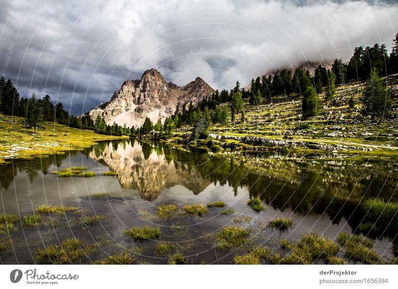 Alm in den Dolomiten Ferien & Urlaub & Reisen Natur Sommer Pflanze Landschaft Tier Ferne Berge u. Gebirge Umwelt Tourismus außergewöhnlich Freiheit See Ausflug