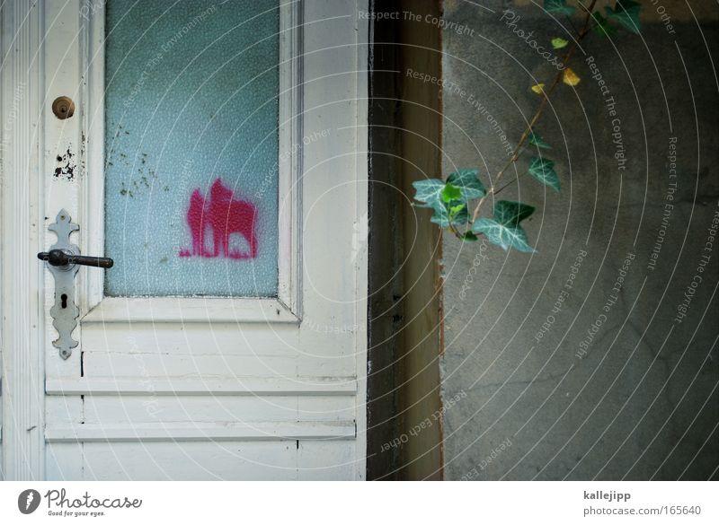 haustier Natur Pflanze Landschaft Tier Umwelt Graffiti Tierjunges Wand Mauer Kunst rosa Tür Tierpaar Wildtier paarweise süß