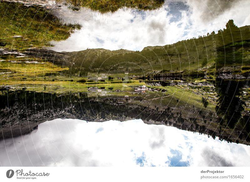 Und die Welt steht Kopf *1250* Natur Ferien & Urlaub & Reisen Pflanze Sommer Landschaft Tier Ferne Berge u. Gebirge Umwelt Wiese Freiheit See Felsen Tourismus