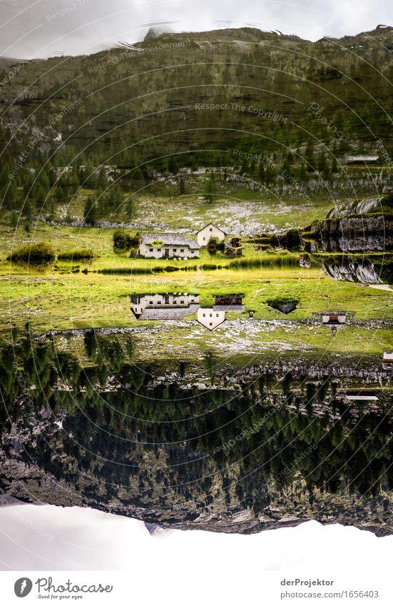 Dolomiten doppelt gut Natur Ferien & Urlaub & Reisen alt Pflanze Sommer Landschaft Tier Ferne Berge u. Gebirge Umwelt außergewöhnlich Freiheit See Felsen