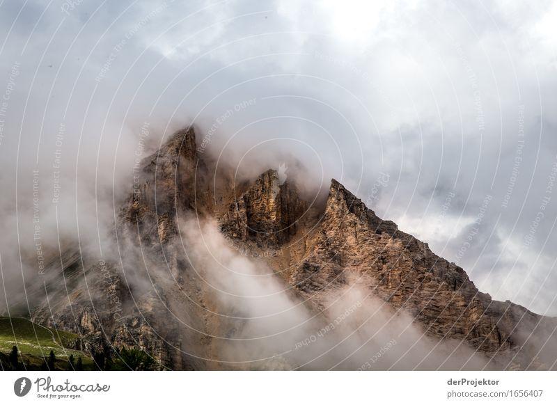 Wolkenberge Natur Ferien & Urlaub & Reisen Pflanze Sommer Landschaft Tier Ferne Berge u. Gebirge Umwelt Freiheit Felsen Tourismus Nebel wandern Ausflug