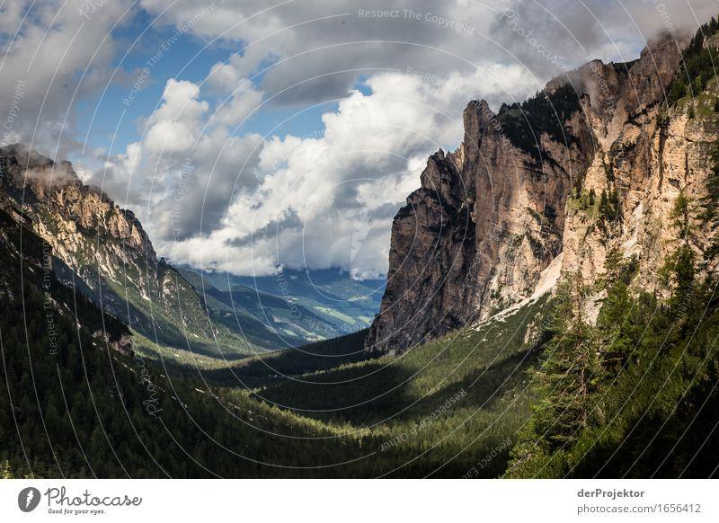 Ein bisschen Sonne Natur Ferien & Urlaub & Reisen Pflanze Sommer Landschaft Tier Ferne Wald Berge u. Gebirge Umwelt Gefühle Freiheit Felsen Tourismus wandern