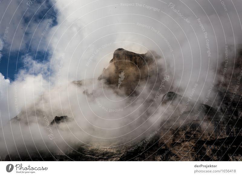 Blauweisgrau Natur Ferien & Urlaub & Reisen Pflanze Sommer Landschaft Tier Ferne Berge u. Gebirge Umwelt Gefühle Freiheit Felsen Tourismus wandern Ausflug