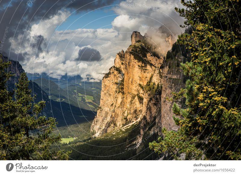 Ein kleiner Lichtblick Natur Ferien & Urlaub & Reisen Pflanze Sommer Landschaft Tier Ferne Berge u. Gebirge Umwelt Freiheit Felsen Tourismus wandern Kraft