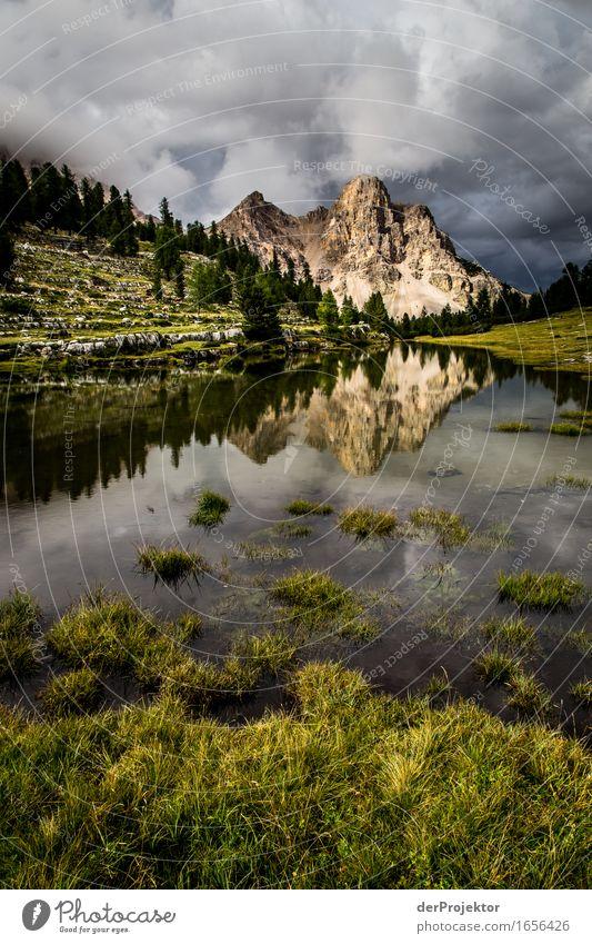 Berg in einer Spiegelung auf einer Alm in den Dolomiten Ferien & Urlaub & Reisen Natur Sommer Pflanze Landschaft Ferne Berge u. Gebirge Umwelt Wiese Tourismus
