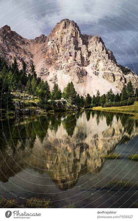 Spiegelberg 3 Natur Ferien & Urlaub & Reisen Pflanze Sommer Landschaft Tier Freude Ferne Berge u. Gebirge Umwelt Freiheit See Felsen Tourismus Zufriedenheit