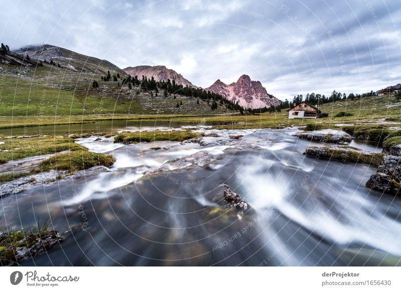 Ein Morgen in den Dolomiten Natur Ferien & Urlaub & Reisen Pflanze Sommer Landschaft Tier Ferne Berge u. Gebirge Umwelt Gefühle Freiheit Felsen Tourismus Wellen