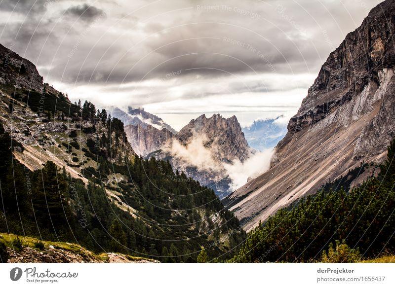 Nebel in den Dolomiten Ferien & Urlaub & Reisen Tourismus Ausflug Abenteuer Ferne Freiheit Berge u. Gebirge wandern Umwelt Natur Landschaft Pflanze Tier Sommer