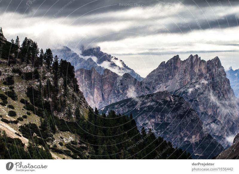 Grün-Stein-Grau Natur Ferien & Urlaub & Reisen Pflanze Sommer Baum Landschaft Tier Ferne Wald Berge u. Gebirge Umwelt Freiheit Felsen Tourismus wandern Ausflug