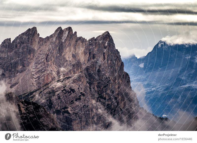 Grau auf blau Ferien & Urlaub & Reisen Tourismus Ausflug Abenteuer Ferne Freiheit Berge u. Gebirge wandern Umwelt Natur Landschaft Pflanze Tier Sommer