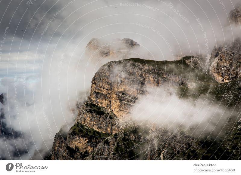 Ein bisschen Hoffnung Natur Ferien & Urlaub & Reisen Pflanze Sommer Landschaft Tier Ferne Berge u. Gebirge Umwelt Felsen Tourismus Nebel wandern Ausflug