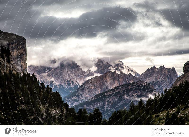 Grau in grau Ferien & Urlaub & Reisen Tourismus Ausflug Abenteuer Ferne Freiheit Berge u. Gebirge wandern Umwelt Natur Landschaft Pflanze Sommer Schönes Wetter