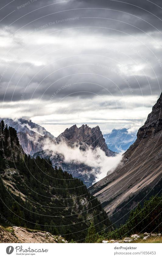 Das Wetter wird nicht besser. Ferien & Urlaub & Reisen Tourismus Ausflug Abenteuer Ferne Freiheit Berge u. Gebirge wandern Umwelt Natur Landschaft Pflanze Tier