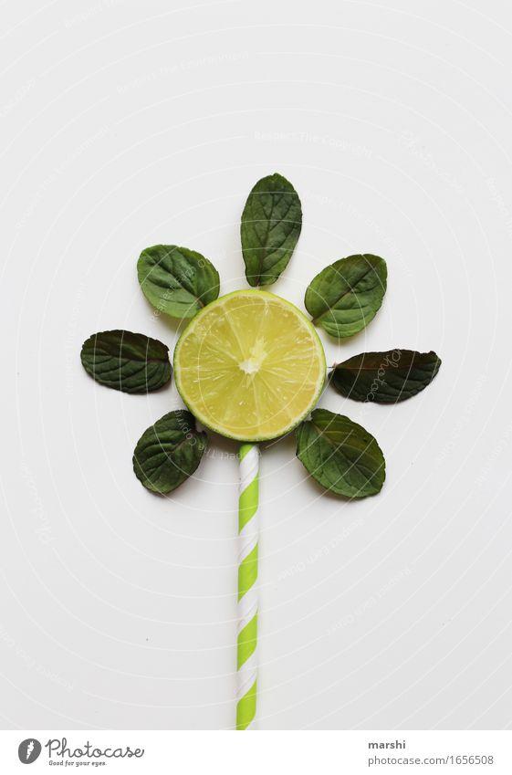 Sommerdrink Lebensmittel Frucht Ernährung Essen Getränk trinken Erfrischungsgetränk Limonade Longdrink Cocktail Gefühle Stimmung Limone Minze Halm Sonne