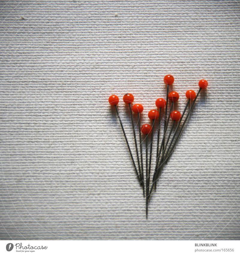 Nadelstrauss Farbfoto Detailaufnahme Textfreiraum links Textfreiraum oben Hintergrund neutral Tag Vogelperspektive Lifestyle Design Freizeit & Hobby Handarbeit