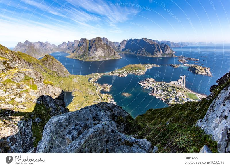 nordic view Umwelt Natur Landschaft Sommer Schönes Wetter Felsen Berge u. Gebirge Küste Bucht Fjord Meer Insel Hafen blau grau grün Ferien & Urlaub & Reisen