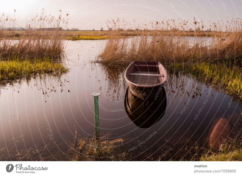 im Havelland Landschaft Pflanze Wasser Himmel Wolkenloser Himmel Horizont Sonnenaufgang Sonnenuntergang Sommer Wetter Schönes Wetter Gras Flussufer Fischerboot