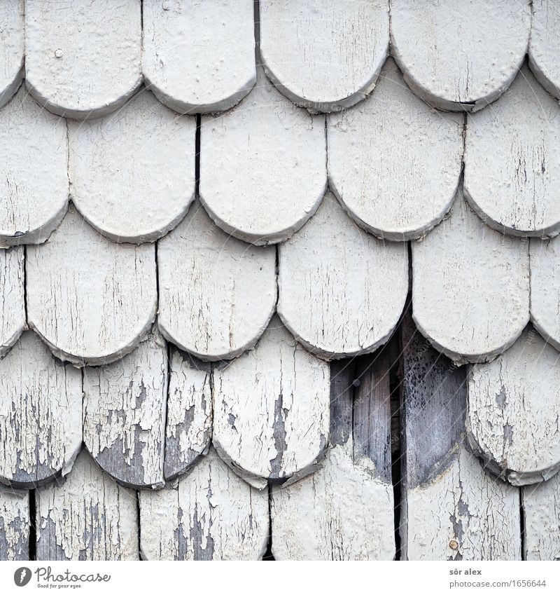 AST 9   eine fehlt Haus Fassade Vergänglichkeit Vergangenheit Denkmal Altstadt Holzfassade Holzschindel