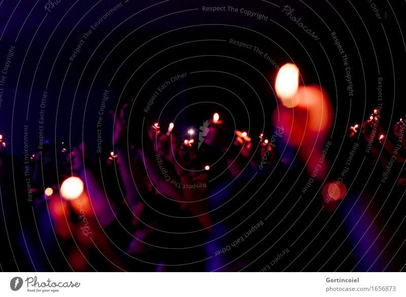 Konzert Kunst Veranstaltung Show Musik Fan dunkel Euphorie Romantik Stimmung Feuerzeug Lied Farbfoto Gedeckte Farben Innenaufnahme Textfreiraum oben Nacht Licht