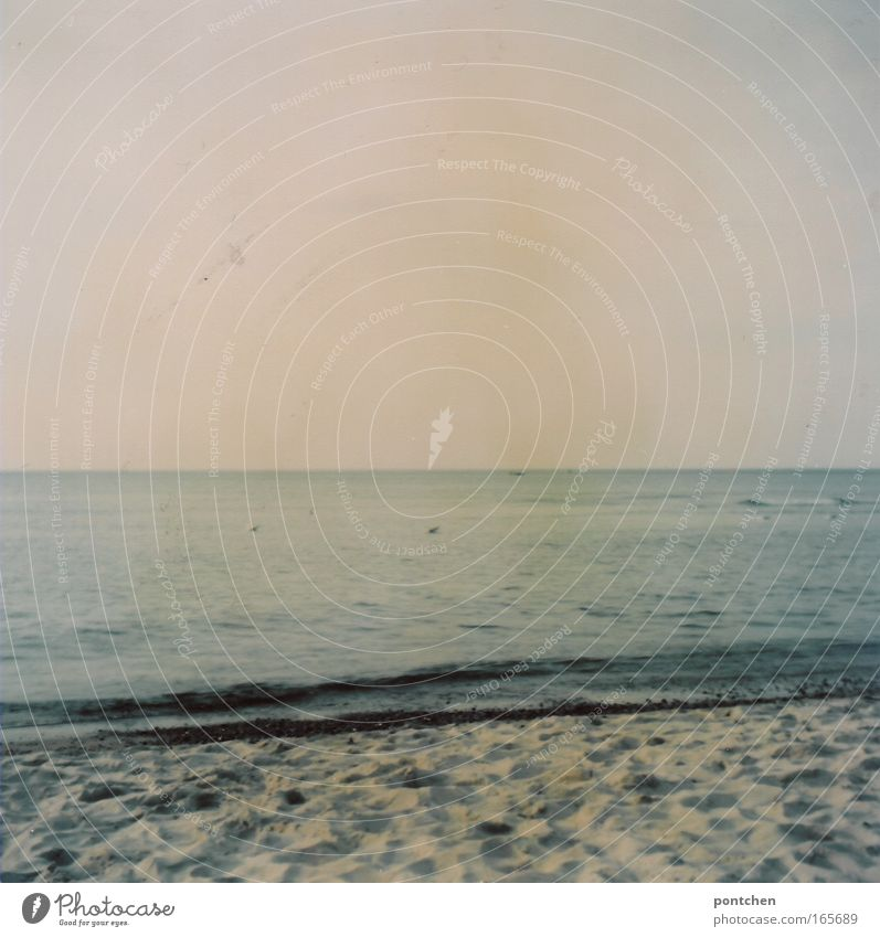 Blick auf Strand und Meer. Ostsee. Ruhe Farbfoto Gedeckte Farben Außenaufnahme Menschenleer Textfreiraum oben Tag Freizeit & Hobby Ferien & Urlaub & Reisen