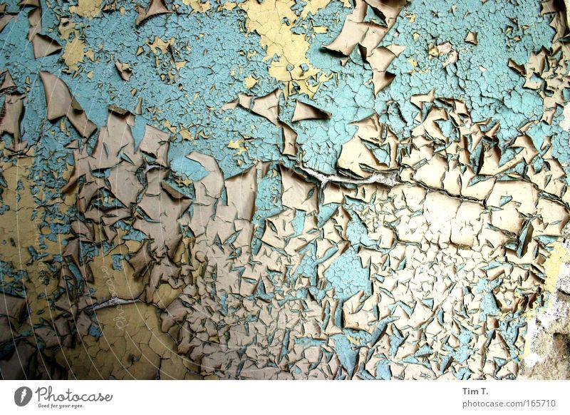 Berlin im Wandel Haus Gebäude Mauer Wohnung Raum Dekoration & Verzierung ästhetisch Bauwerk Fabrik Altstadt Wohnzimmer Tapete bizarr Ruine Renovieren