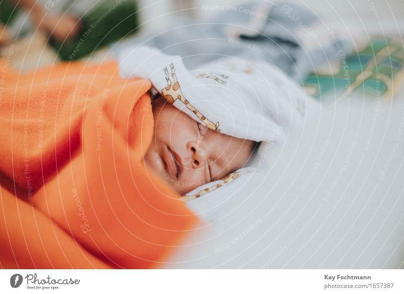 ° Wohlgefühl Sommer Mensch maskulin Baby Leben Gesicht 1 0-12 Monate Erholung liegen schlafen träumen Glück kuschlig niedlich weich Zufriedenheit Sicherheit