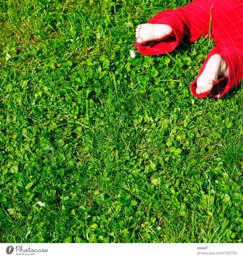 Draußen krabbeln Mensch Kind grün rot Sommer Wiese Leben Spielen Garten Beine Fuß Kindheit Baby natürlich liegen frisch