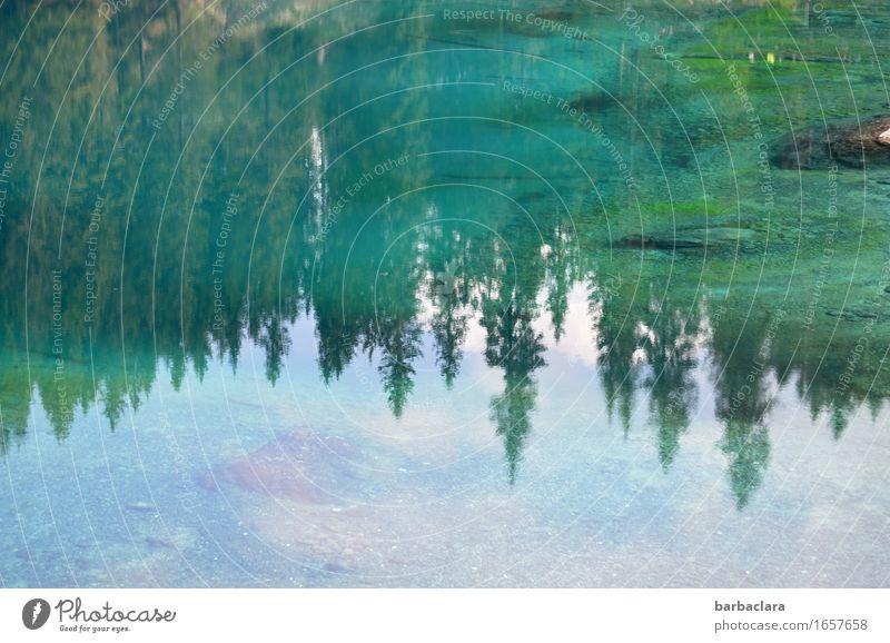 Lec de Ergobando Himmel Natur Ferien & Urlaub & Reisen Farbe grün Wasser Wald Berge u. Gebirge Umwelt See Klima Urelemente Sinnesorgane Dolomiten Südtirol