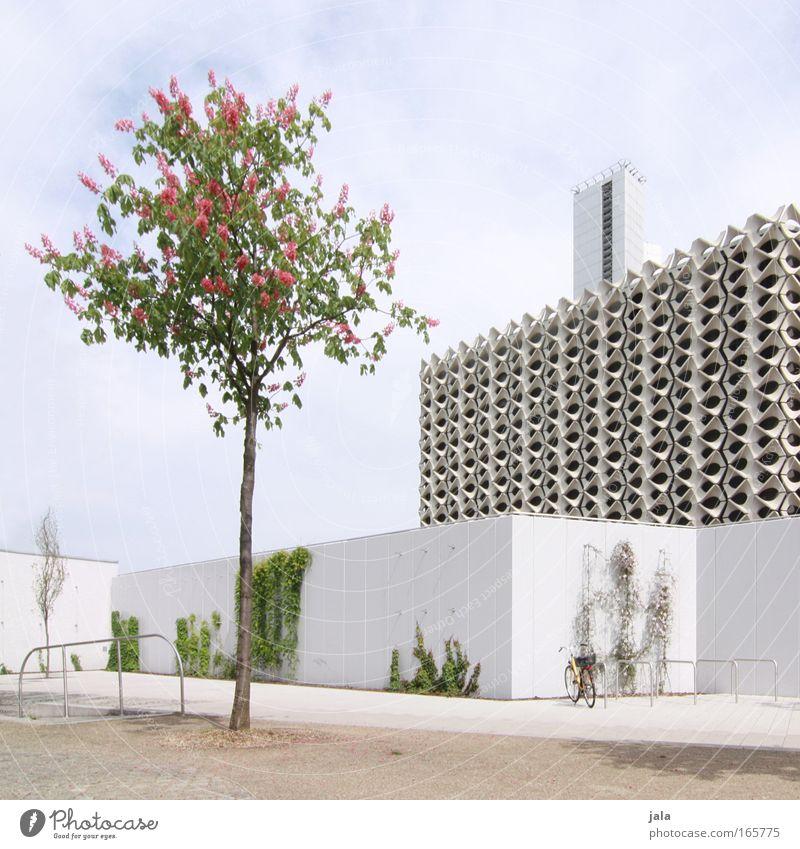 Stadt der Moderne Himmel weiß schön Baum Pflanze Haus Wand Architektur Mauer Gebäude hell Fassade groß Platz modern Perspektive