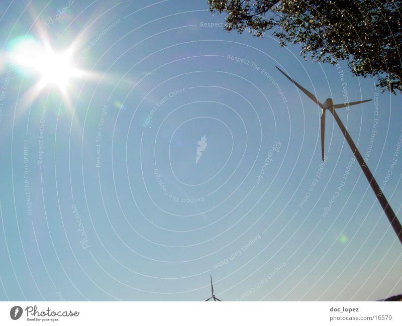 der_Sonne_entgegen_2 Himmel Baum Sonne Landschaft Stimmung Windkraftanlage blenden Rauschen