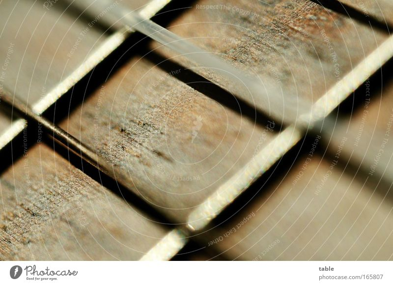 Saitling Farbfoto Gedeckte Farben Makroaufnahme Freizeit & Hobby Kunst Künstler Musik Konzert Open Air Musiker Gitarre Saite Holz Metall Kunststoff
