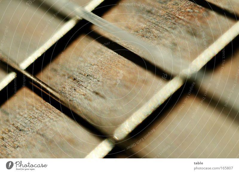 Saitling Freude Gefühle Musik Holz träumen Stimmung Tanzen Feste & Feiern Metall Kunst glänzend ästhetisch Kommunizieren Freizeit & Hobby einzigartig