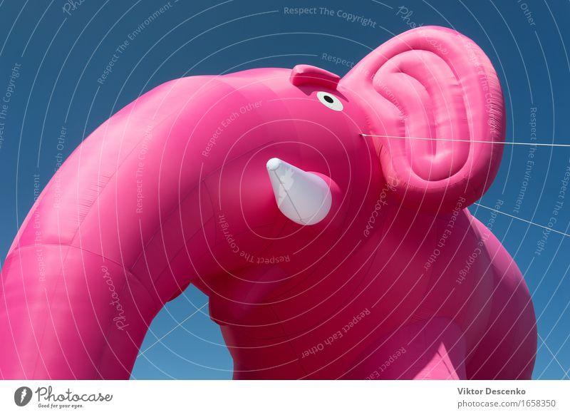 Aufblasbarer rosa Elefant mit weißen Stoßzähnen blau schön Farbe rot Freude Liebe Glück Feste & Feiern fliegen Design Dekoration & Verzierung Geburtstag