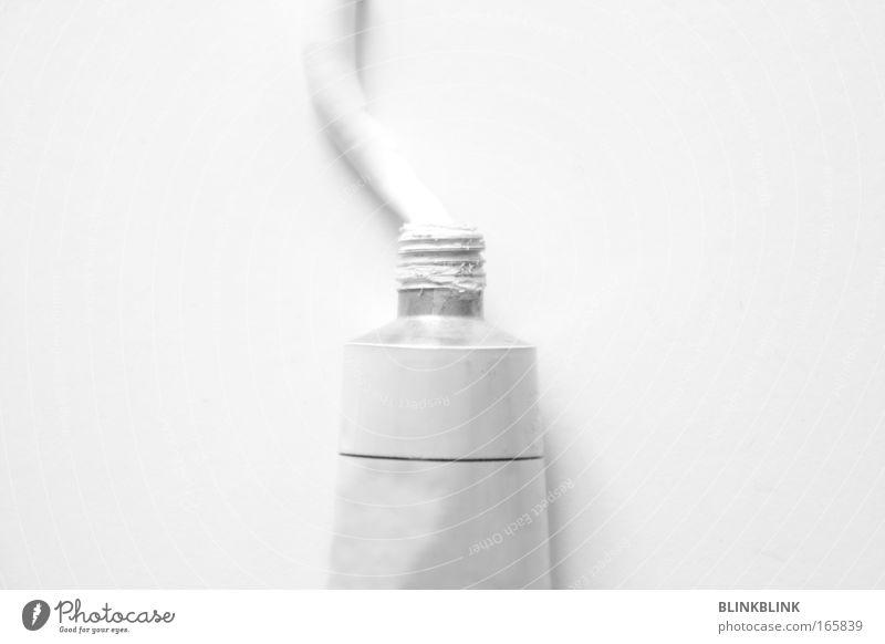 weissmacher Schwarzweißfoto Detailaufnahme Textfreiraum links Textfreiraum rechts Freisteller Hintergrund neutral Schatten Vogelperspektive Kunst Künstler Maler