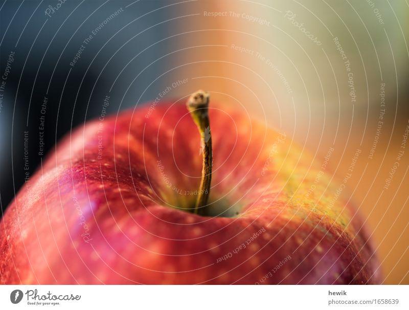 Apfel Natur rot gelb Lebensmittel Frucht Apfel