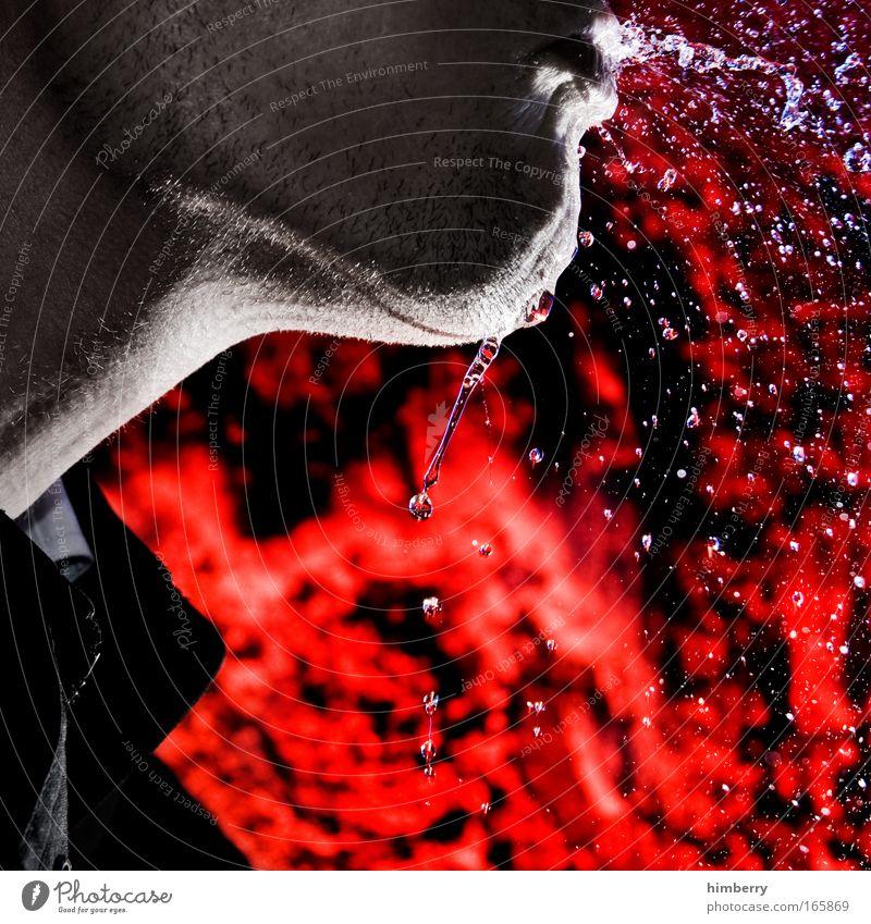 spuckspecht Mensch rot Freude Erwachsene Ernährung kalt Haut Mund Trinkwasser maskulin nass Design frisch verrückt Getränk Coolness