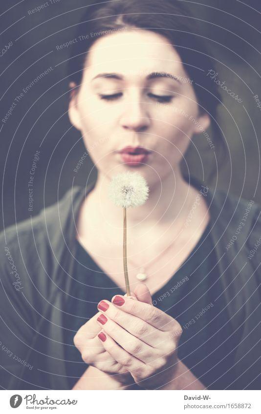 Pusteblümchen Leben harmonisch Wohlgefühl Zufriedenheit Sinnesorgane Erholung ruhig Freiheit Sommer Sommerurlaub Sonne Mensch feminin Junge Frau Jugendliche