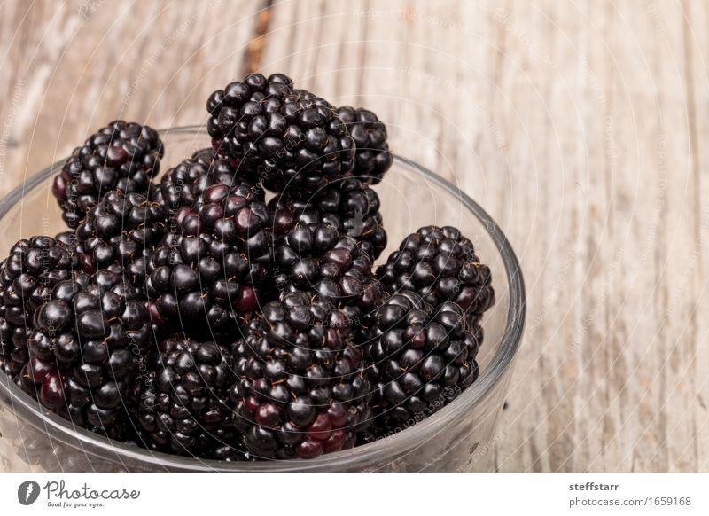 Klarglasschüssel reife Brombeeren Lebensmittel Frucht Ernährung Essen Frühstück Bioprodukte Vegetarische Ernährung Diät Lifestyle schön Gesundheit
