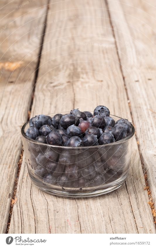 Klarglasschüssel reife Blaubeeren blau Pflanze schön Leben Essen Gesundheit Lebensmittel Gesundheitswesen Frucht Ernährung Wellness Bioprodukte Frühstück
