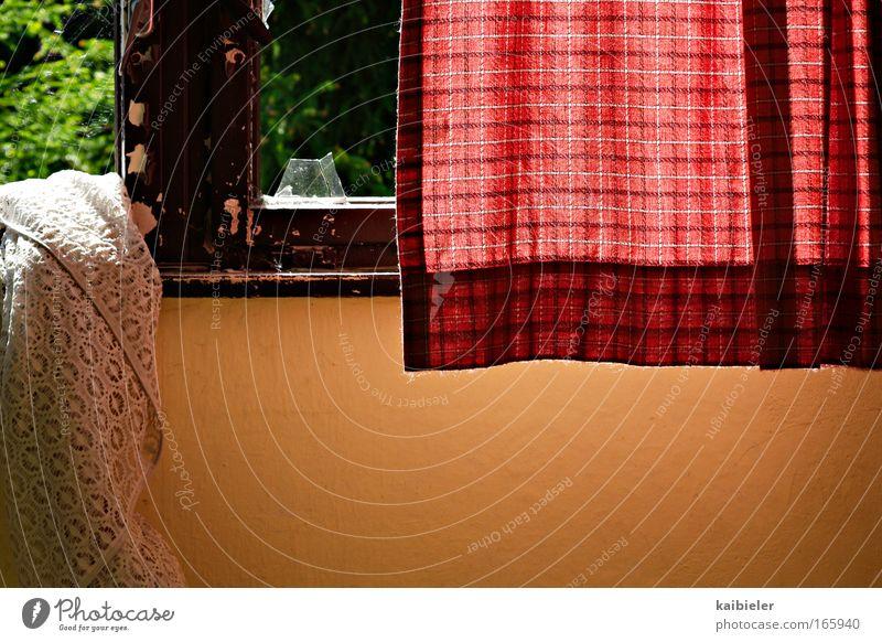 Waschtag grün rot ruhig Einsamkeit gelb Wand Fenster Mauer retro Häusliches Leben Vergänglichkeit Innenarchitektur Idylle Verfall Vergangenheit Fensterscheibe
